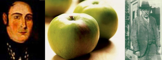 bramley_apple history