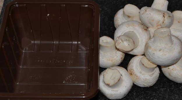 How to store Mushrooms pic2